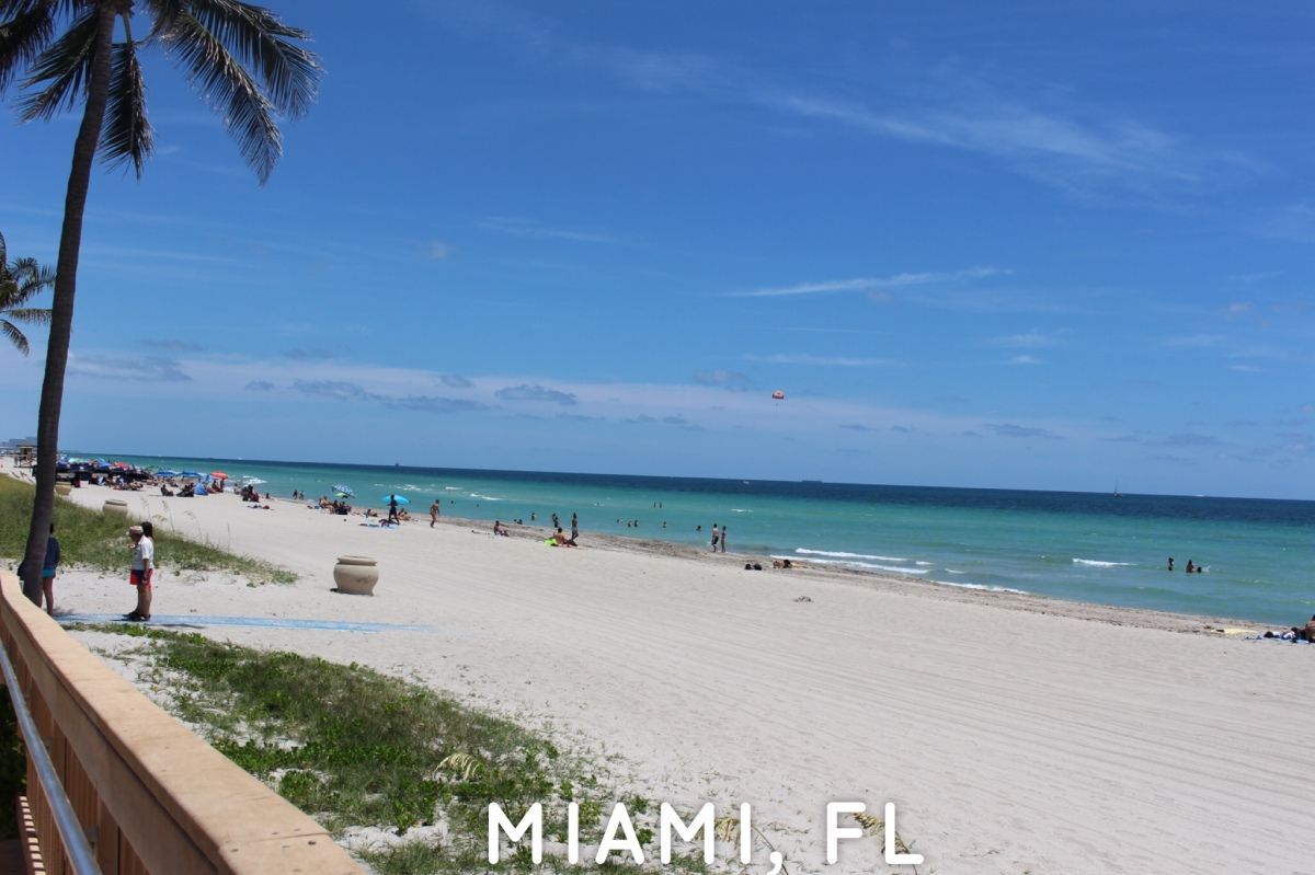 48 hrs to Explore miami florida.